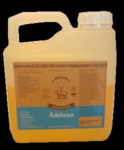Amixan Image